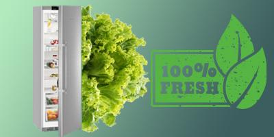Meglepő mennyivel tovább friss marad ebben hűtőben az élelmiszer  A hosszan friss élelmiszer titka…
