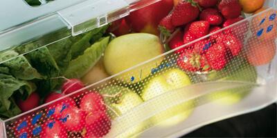 zöldség gyümölcs tárolása, miért romlik meg