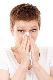 porszivó allergiásoknak